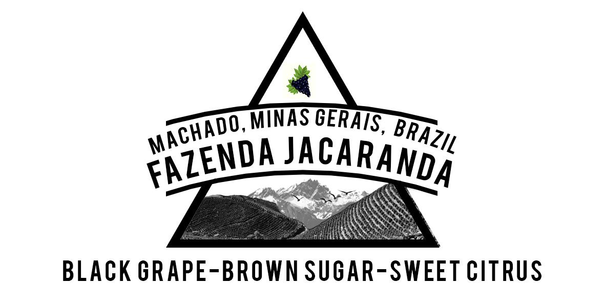 BRAZILIAN FAZENDA JACARANDA