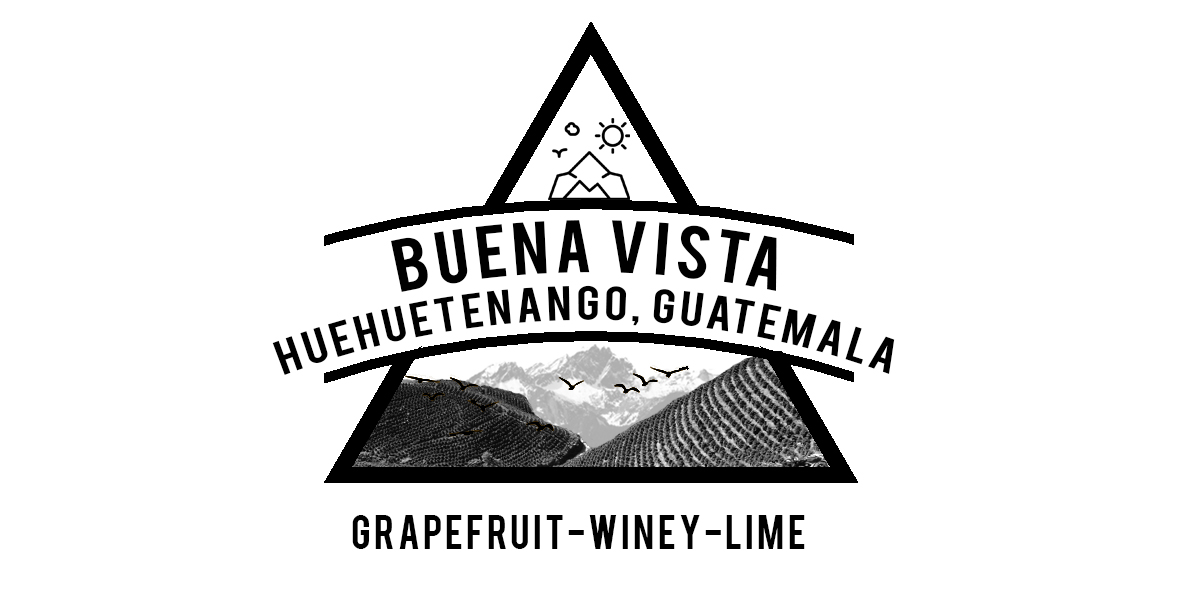 Guatelana Buena Vista Coffee