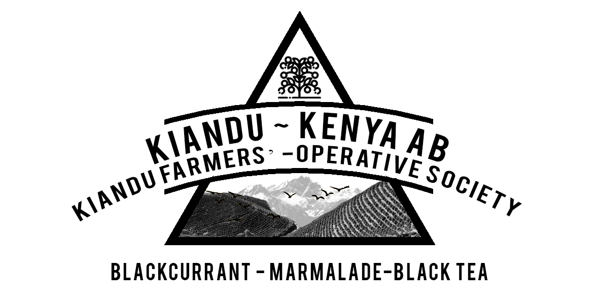 Kenya Kiandu Coffee Factory