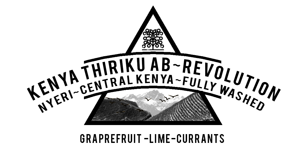 Kenya Thiriku AB