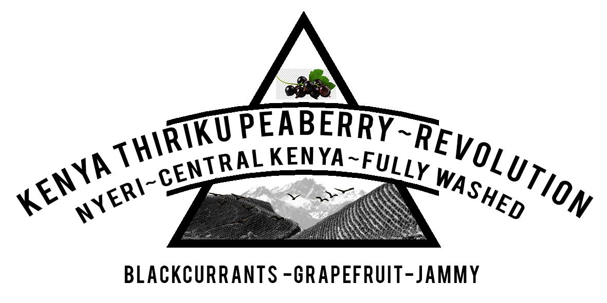 Kenya Thiriku Peaberry