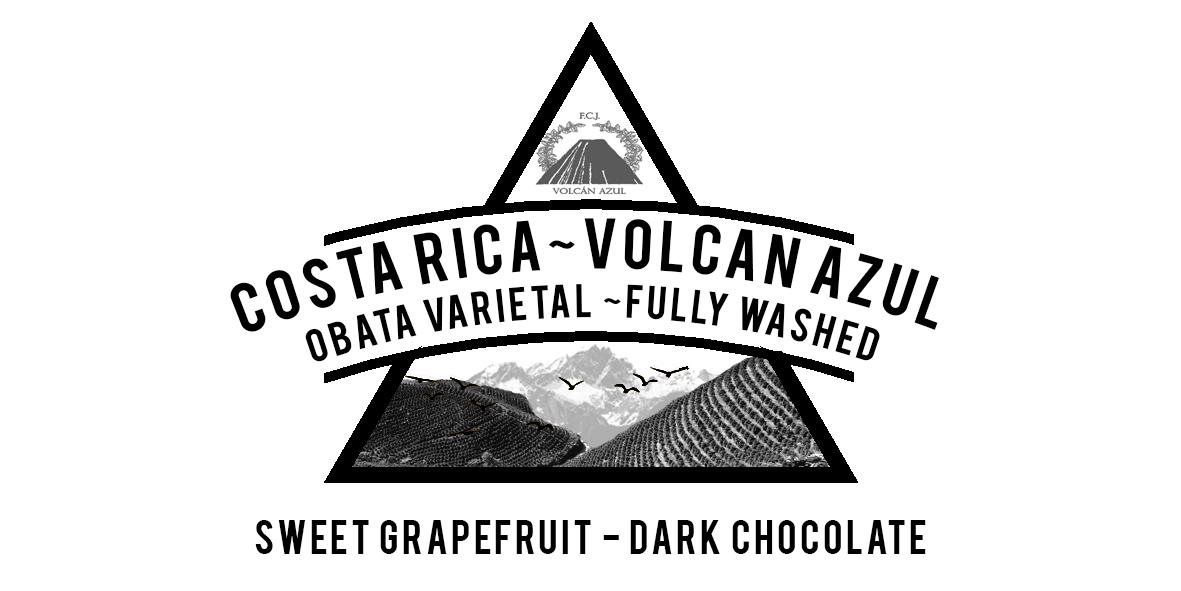 Costa Rica Volcan Azul Fully washed Obata varietal