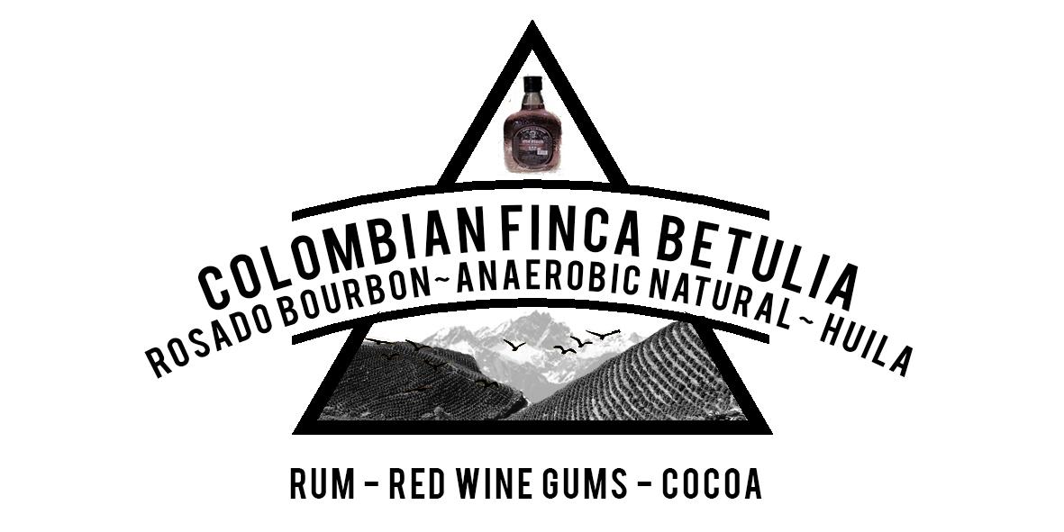 COLOMBIA ROSADO BOURBON FINCA VILLA BETULIA